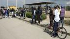 Mineo ist kein einladender Ort, es ist brütend heiss, nirgends ein Baum, der Schatten spenden könnte; etwa 3300 Flüchtlinge leben hier. Mafia und Kleinkriminellen ist es längst gelungen, staatliche Aufträge für die Versorgung und Unterbringung von Flüchtlingen zu ergattern, üppig zu kassieren – und dafür wenig bis gar nichts zu liefern. Ein gutes Geschäft.