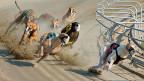Windhunde gelten in Australien als die «Rennpferde der Armen».
