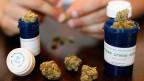 Wo Marijuana gegen Krankheiten angewendet werden darf, haben Ärzte im Schnitt 3500 Dosen weniger Schmerzmittel verschrieben.