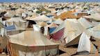 Blick über das saharauischen Lager am Rande der Westsahara. Seit über vierzig Jahren dauert der Konflikt zwischen Marokko und Spanien.