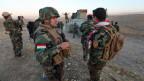 Kurdische Peshmerga-Kämpfer auf dem Weg nach Mossul.
