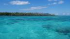 Den Korallenriffs wird das Meerwasser zu warm