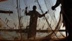 Die Fischer an der Palkstrasse in Sri Lanka plagt eine drängende Frage: Wer schützt uns vor den indischen Schleppnetzen