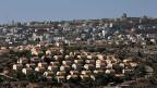 Die Siedlung Amona (Bild) liegt im Norden Ramallahs, auf palästinesischem Boden – und müsste laut dem Obersten Gericht Israels bis am 25. Dezember geräumt werden.