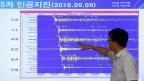 Ein Diagramm zeigt die seismischen Wellen, beobachtet in Südkorea.