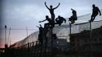 Flüchtlinge klettern über den Grenzzaun der spanischen Enklave.