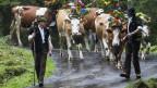 Viele Bauern haben keine Pensionskasse, darum brauchen sie eine hohe AHB.