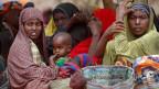 50 bis 79 Prozent der Kinder bis fünf Jahren seien akut unterernährt. Sie erhalten ballasthaltige Kekse.