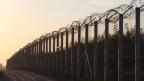 «Die Grenzwächter haben es richtig genossen, die Hunde auf uns loszuhetzen», sagt ein Asylbewerber. Bild: Grenzzaun zwischen Serbien und Ungarn.