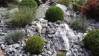 Auch ein Beet aus Steinen gibt Arbeit. Gegen das Unkraut nimmt man oft Gift, was aus ökologischer Sicht bedenklich ist.