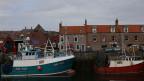 Fischerboote in Eyemouth in Schottland.