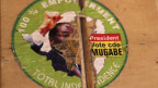 Die Tage von Mugabe als Präsident Simbabwes scheinen gezählt.