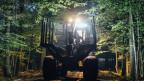 Der sogenannte Holzvollernter ist auch in der Nacht im Einsatz. Die gewaltige Maschine fällt, entastet und zersägt einen Baum in weniger als einer Minute. Auch gesunde Bäume fallen ihm zum Opfer.