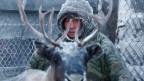 Nur noch etwa 10 Prozent der Nenzen und Chanten ziehen mit ihren Rentierherden durch die Tundra. Symbolbild.
