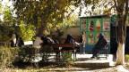 Im Zoo in Kabul können sich auch mal Frauen und Männer unterhalte