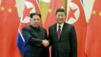 Der nordkoreanische Führer Kim Jong-un (li) und sein chinesischer Amtskollege Xi Jinping.