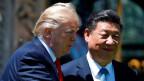 US-Präsident Donald Trump und der chinesische Präsident Xi Jinping am 7. April 2017.