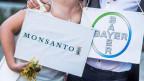 Bayer und Monsanto dürfen zusammen in eine für sie gewinnbringende Zukunft schreiten.