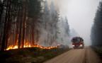 Einer der vielen Waldbrände, die derzeit in Schweden wüten.