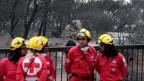 Mitglieder des Roten Kreuzes durchsuchen das Gebiet nach Vermissten.