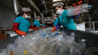 Arbeiter sortieren Kunststoff-PET-Flaschen in Asiens grösstem PET-Kunststoffrecycling-Werk INCOM Resources Recovery in Peking.