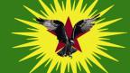 Emblem der geheimen Unterorganisation «Komalen Ciwan», die als bewaffneter Arm der PKK gilt. Printscreen Website.