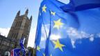 Anti-Brexit-Demonstranten winken mit EU-Flaggen vor dem Parlamentsgebäude in London.