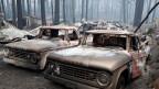 Durch Waldbrände zerstörte Wagen am 14. November 2018 in Paradise, Kalifornien, USA.