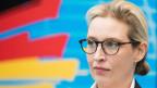 AfD-Spitzenfrau Alice Weidel unter Druck