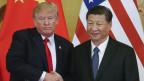 Das Bild zeigt Xi Jingping und Donald Trump, die sich die Hände schütteln.