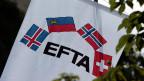 EFTA Fahne mit den Mitgliedsländern Island, Fürstentum Liechtenstein, Norwegen und der Schweiz.