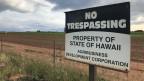 Betreten verboten: Testfelder für Gen-Pflanzen und Pestizide auf Kauaii, der Garteninsel auf Hawaii.
