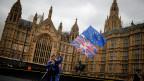 Ein Brexit-Gegner vor dem Parlament in London.
