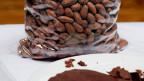 Kakaobohnen und Schokoladenstücke.
