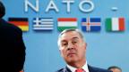 Montenegros Premierminister Milo Djukanovic am 19. Mai 2016 an einem Nato-Treffen in Brüssel.