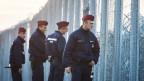 Ungarische Polizisten suchen an einem Grenzzaun in Ungarn nach Flüchtlingen.