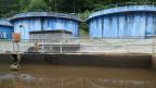 Eine Wasseranlage in Kentucky.