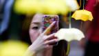 Eine Frau fotografiert mit ihrem Mobile Miniatur-Papierschirme, das Symbol der pro-demokratischen Demonstranten in Hongkong.