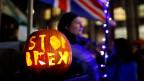 Ein Kürbis mit der Inschrift «Stop Brexit» an Halloween in London.