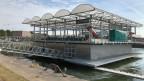 Die weltweit erste Floating-Farm in den Niederlanden.