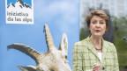 Bundesrätin Simonetta Sommaruga bei ihrer Rede anlässlich der Feierlichkeiten des 30. Jubiläums des Vereins Alpen-Initiative am 18. Mai 2019 in Goldau.