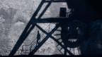 Steinkohle lagert im Kohlehafen vom Kohlekraftwerk Mehrum im Landkreis Peine, Deutschland.