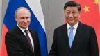 Der chinesische Präsident Xi Jinping (rechts) und der russische Präsident Wladimir Putin am BRICS-Gipfeltreffen im November 2019.