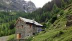 Das Rustico im Val Pontirone muss abgebrochen werden, weil die Mauern nicht renoviert, sondern neu gebaut wurden.