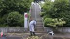 Ein arbeitsloser Informatiker sollte zwei Monate lang Grünanlagen reinigen, trat die Arbeit aber nie an. Darauf stellte die Stadt ihre Hilfe ein. Symbolbild.