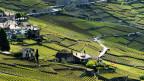 Die Landschaft der Weinterrassen von Lavaux.