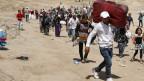 Hunderttausende sind aus Syrien geflüchtet; einige wenige von ihnen sind in der Schweiz gelandet.