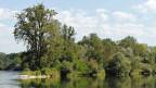 Landschaft in der Thurebene.