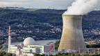 Das Atomkraftwerk Leibstadt.