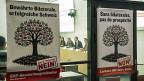 Überparteiliches Komitee gegen die «SVP-Abschottungsinitiative», am 17. Dezember in Bern.